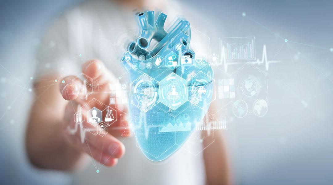 Grafik des Herzens in der Kardiologie